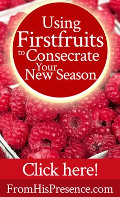 Using Firstfruits to Consecrate Your New Season | by Jamie Rohrbaugh | FromHisPresence.com