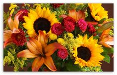 Florist in bangalore for online flower delivery in bangalore like roses, carnations, lilies, gerberas etc and flowers shops to send flowers bangalore. Composition Examples, Composition Art, Send Flowers, Summer Flowers, Wedding Flowers, Puzzle Of The Day, Online Flower Delivery, Online Florist, 4k Uhd