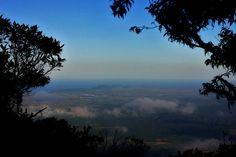 Apres une ascencion de 1 622 m du Mont Bartle Frere