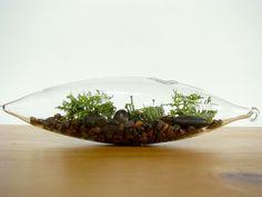 A great gift: Modern Vessel  Lichen Moss Terrarium. $28.00, via Etsy.