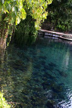 Acerca de San Blas...  Lugar mágico, en la Riviera Nayarit...  One of my best memories!