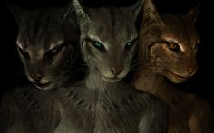 Coverkhajiits: A higher-resolution Khajiit skin texture replacer with the intention to make the cats look better.