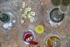 Vitro Vas: Clear by Sarah Colson Ltd made in United Kingdom (UK) on CrowdyHouse