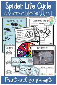 Students will read and learn about the life cycle of spiders. Writing Posters, Writing Genres, Writing Strategies, Writing Resources, Teaching Activities, Teaching Writing, Teaching Ideas, Spider Pictures, Text Types