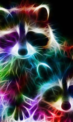 Abstract Fractal Neon Colors Love Heart HD Wallpaper Arte Raccoons Pet Raccoon