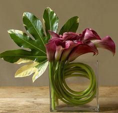 Callas and Aralia leaf