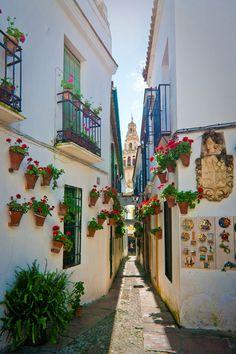 Rincones de Andalucía: Calleja de las Flores (Córdoba) / Places of Andalusia: Calleja de las Flores (Córdoba), by @cntravelerspain