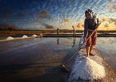 Farmers Harvesting Salt. Smithsonian 10th Annual Photo Contest Finalists