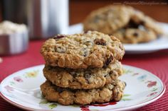 Scientifically Sweet: Chewy Chocolate Cranberry Oatmeal Cookies - small batch