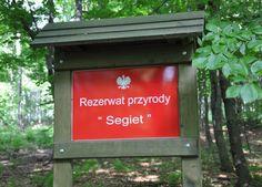 Przy wejściu do rezerwatu Segiet.