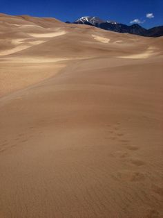 Great Sand Dunes National Park in Alamosa, CO