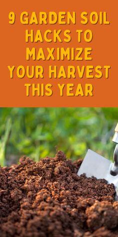 Gardening Hacks, Greenhouse Gardening, Garden Soil, Garden Tips, Herb Garden, Vegetable Garden, Container Gardening, Love Garden, Lawn And Garden