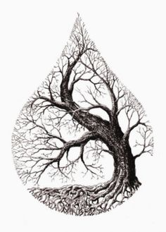 Tree Tattoo water drop tree Your Number One source for daily Tattoo designs Ideas Inspiration Life Drawing, Drawing Sketches, Art Drawings, Drawings Of Trees, Tattoo Sketches, Pencil Drawings, Tattoo Life, Tree Of Life Tattoos, Nature Tattoos