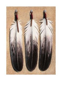 Feather Tattoo Designs: Golden eagle feather tattoo