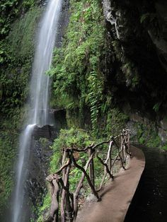 Waterfall at Levada do Risco, Madeira island, Portugal ✯ ωнιмѕу ѕαη∂у
