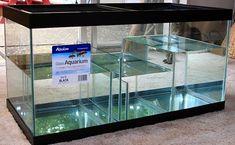 sump design Do It Yourself Aquarium Chiller, Aquarium Sump, Biotope Aquarium, Home Aquarium, Reef Aquarium, Aquarium Fish Tank, Aquarium Systems, Fish Aquariums, Betta Fish