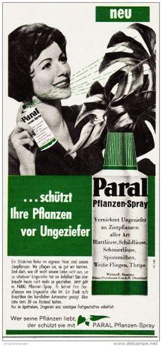 Original-Werbung/ Anzeige 1960 - PARAL PFLANZEN - SPRAY - ca. 100 x 220 mm