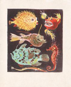 Le Royaume De La Mer illustrated by Rojan, 1948