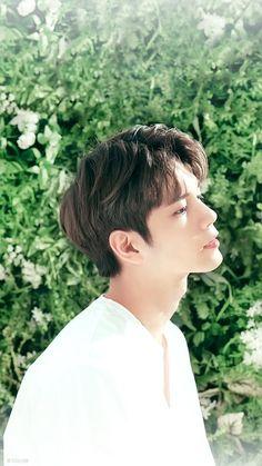 Innisfree x Ong Cho Chang, Ong Seung Woo, Guan Lin, Produce 101 Season 2, Cha Eun Woo, Lee Daehwi, Kim Jaehwan, Ha Sungwoon, Kpop