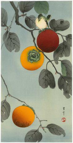 Watanabe Seitei  'Bird On A Perssimon Tree'  1920s-1930s