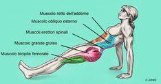 Un solo esercizio ti aiuta a bruciare i grassi ed a migliorare la postura allo stesso tempo - Idee Geniali