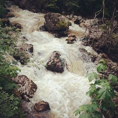 Békás patak #hegyvidek #hegyipatak #forest #patak #wanderlust #hiking #turazas #erdély #szekelyfold #természetjárás #természet #nature