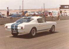 Mustang GT350 Racing