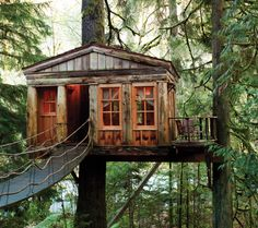 There's a certain Neverland allure between nature lovers and treehouses. Maybe it's the idea of sleeping tucked beneath a canopy, or a means of re-living an unquenched childhood dream. Whatever the...