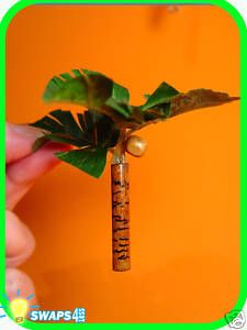 "Mini Palm Tree SWAP/Tropical Island SWAP  Supplies - Artificial leaves, small dowel rod cut into 2"" length, wooden bead (optional)  DIRECTIONS   1. Cut the dowel rod into a 2 inch length and paint brown. Add bark details with black sharpie or with a wood burning tool.  2. Cut 2 or 3 floral leaves and hot glue to the top of the dowel rod.  3. Paint wooden bead brown. Hot glue on as a coconut."