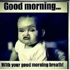 Good Morning Breath Meme Funny Morning Memes, Good Morning Meme, Funny Good Morning Images, Morning Humor, Funny Quotes, Funny Memes, Memes Humor, Tgif Funny, Funny Weekend