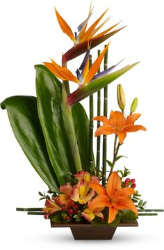 """Telefloras Exotic Grace  Amber- have you thought about using Bird of Paradise? It has your """"pops"""" of color (they come in yellow and orange). I've never seen it used for a wedding before, but it does have that nice beachy/tropical vibe."""