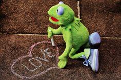 life in the egghouse✧* Miss Piggy, Sapo Frog, Sapo Kermit, Kermit The Frog Meme, Reaction Pictures, Funny Pictures, Sapo Meme, Frog Wallpaper, Neon Genesis Evangelion