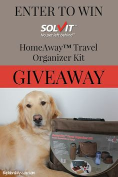 Solvit Makes Traveling With Your Pet Easy #sponsored