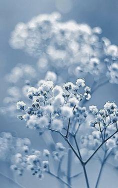 Travels Spot: Pastels Blue Photograph