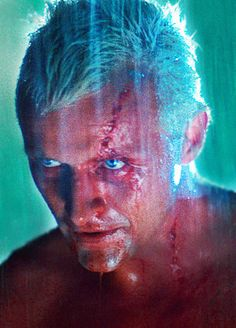 """""""I've seen things you people wouldn't believe. Attack ships on fire off the shoulder of Orion. I watched c-beams glitter in the dark near the Tannhäuser Gate. All those moments will be lost in time, like tears in rain. Time to die"""" - Roy Batty, Blade Runner"""