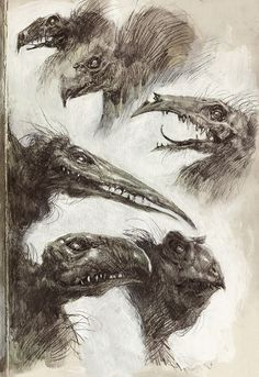 Audrey Benjaminsen: Sketched some Skeksis a little while back. It's 2015, and I just recently discovered the Dark Crystal, haha. Better late than never! :) It's been a good holiday. I'm a bit anxious about entering my...