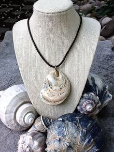 Warmer Weather Shell Necklace by SeashoreFinds on Etsy, $12.00