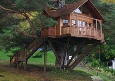 """As Earth Week approaches, check out these super-secret clubhouses perched """"up there."""""""