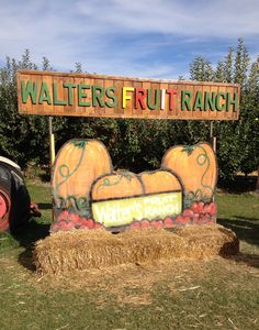 Walters Fruit Ranch has apples and pumpkins galore! #spokane