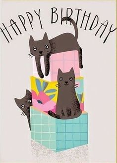 My Second Favorite Happy Birthday Meme – Best Puzzles, Games, Ideas & Happy Birthday Meme, Happy Birthday Pictures, Birthday Wishes Quotes, Cat Birthday, Happy Birthday Greetings, Birthday Messages, Birthday Sentiments, Humor Birthday, Bday Cards