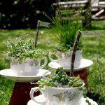 Kendiniz Yapabileceğiniz 17 Hoş Çay Fincanı Bahçe - Ev Düzenleme