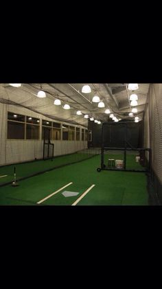 Luxury Basement Batting Cage