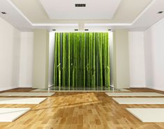 I would like a real nature option.  I like the way it feels and would like maybe a window or plant life near or next to the yoga studio