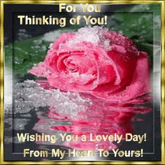 For You Thinking of you Wishing you a lovely day hello friend comment good…