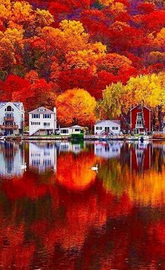 Conneticut #Autumn #Nature Seymour Connecticut, Fall In Connecticut, Colors Of Autumn, Colors Of Nature, Autumn Love, Vivid Colors, Fall Landscape, Canada Landscape, Beautiful Nature Photography
