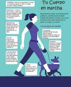 Los beneficios de caminar #salud #fisioterapia