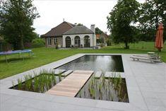 zwemvijvers at DuckDuckGo Small Backyard Pools, Ponds Backyard, Garden Pool, Natural Swimming Ponds, Natural Pond, Modern Landscape Design, Modern Landscaping, Living Pool, Pond Design