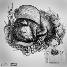 Baby hedgehog. on Threadless