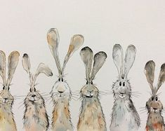 Characterful animal illustrations by HaresAndHerdwicks on Etsy . - Characterful animal illustrations from HaresAndHerdwicks on Etsy - Animal Paintings, Animal Drawings, Art Drawings, Easter Drawings, Drawing Animals, Drawing Sketches, Art Et Illustration, Animal Illustrations, Cute Animal Illustration