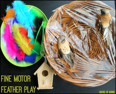 Fine Motor Feather Play - House of Burke